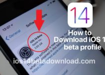 How to install the iOS 14 public beta on your iPhone