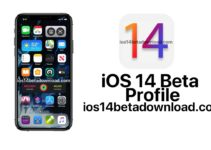 ios 14 beta profile download